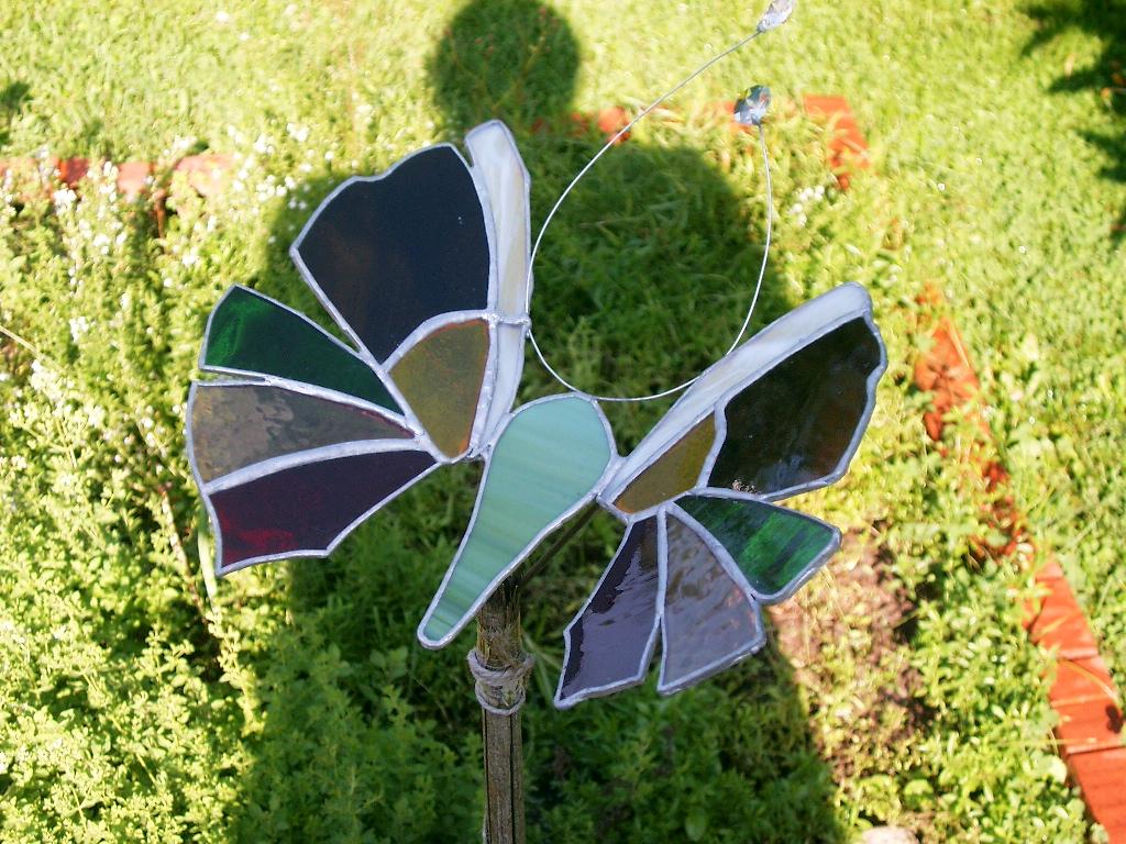 2002-05 butterfly3