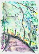 Path to Felsenegg